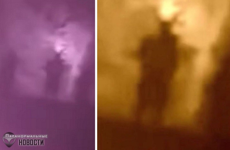 Человека-Мотылька засняли на кладбище