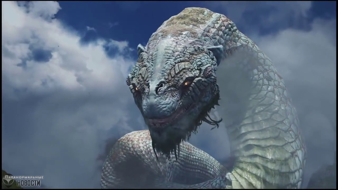 Загадочная 18-метровая змея, которую видели в Калифорнии 150 лет назад