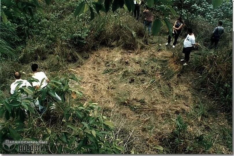 Обнародованы уникальные фотографии с места посадки НЛО в Бразилии в 1995 году