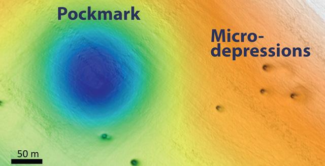 На дне Тихого океана нашли более 5 тысяч странных дыр