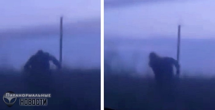 В Башкортостане сняли на видео Снежного Человека, бегущего за автомобилем