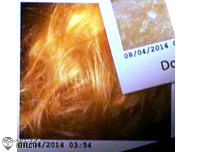 Странное исчезновение Крис Кремерс и Лизанны Фрон