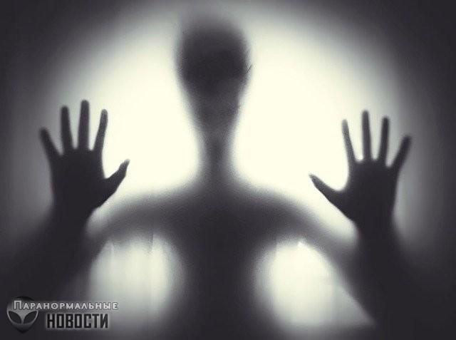 «Нашу семью преследуют призраки-насильники»