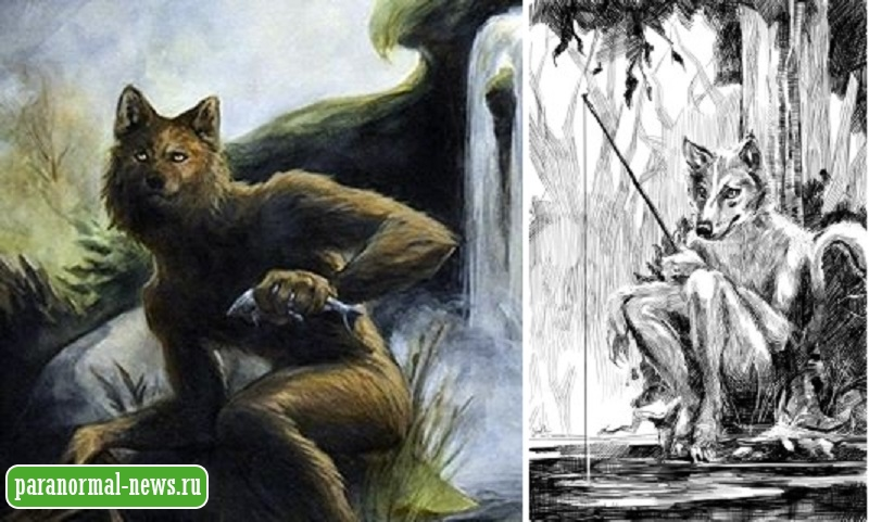 Загадочные Вулверы - люди с волчьими головами из Шотландских легенд