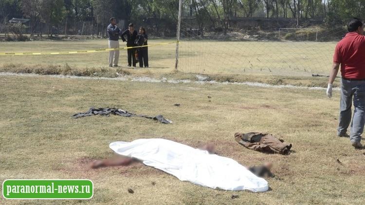 Обвиняют чупакабру: В Мексике мужчину убило загадочное животное