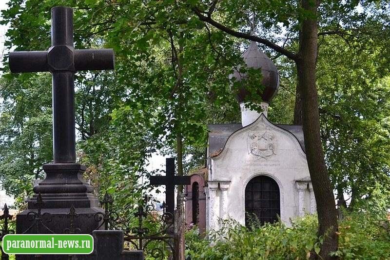 Увидели кота на кладбище - покормите и приласкайте его: Народные кладбищенские приметы и запреты