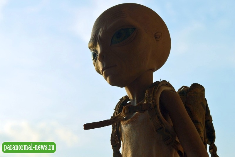 Любопытная теория о том, почему у инопланетян большие головы