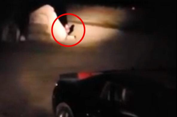 На видео сняли крошечного человечка, прячущегося за камнем