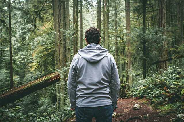 Кинулся бежать в страхе и исчез: Странное исчезновение в лесу Айдахо в 2018 году