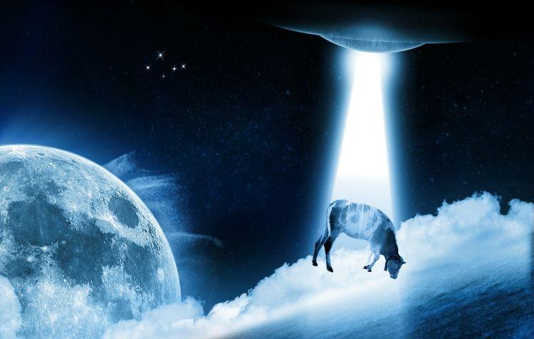 Как НЛО похитил и убил ...оленя
