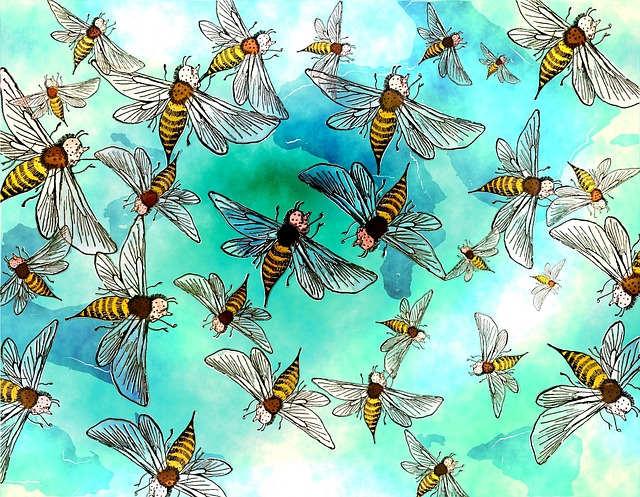 Огромный рой насекомых, странное существо и необычные тени в доме