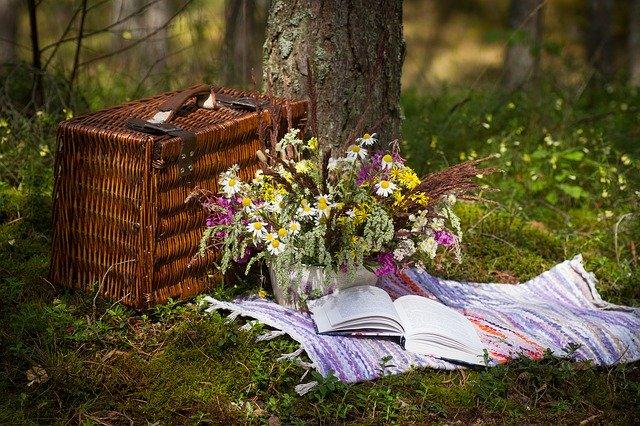 Британка приехала на пикник в лес и встретила там группу первобытных людей с чудовищем