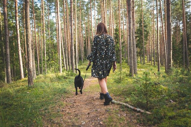 «В моем лесу живет что-то большое и страшное»