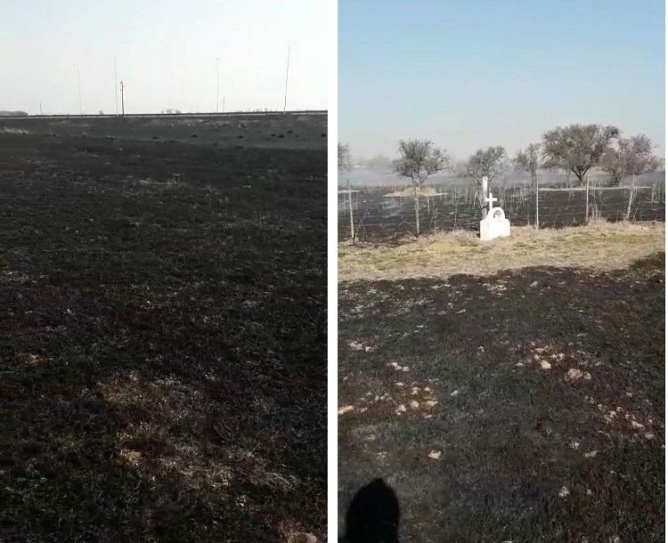 Мистика на пожаре в Аргентине: Огонь уничтожил все вокруг, но не тронул мемориал погибшему ребенку