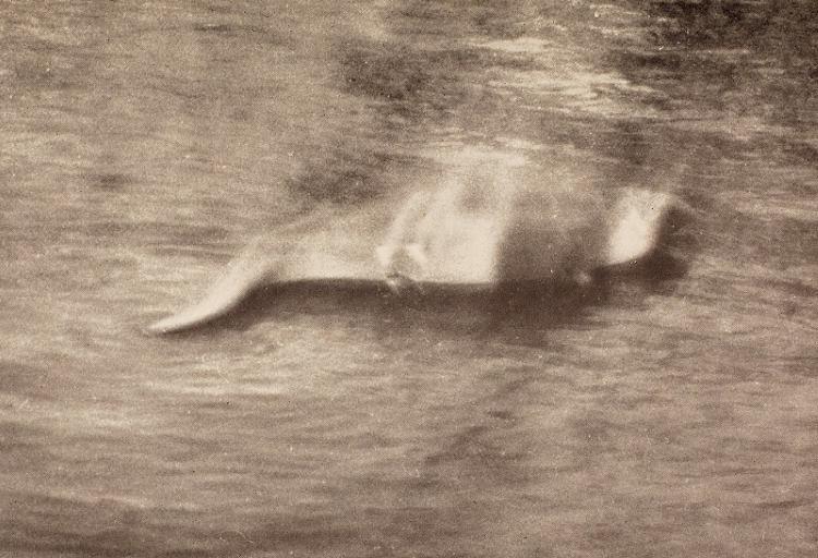 Что инопланетяне делают на шотландском озере Лох-Несс?