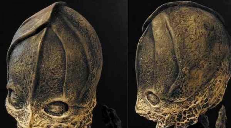Младенец-мутант или реально что-то внеземное: Кем же был «Пришелец Алёшенька»?