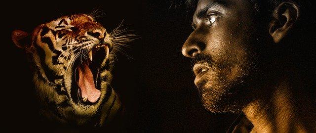 Откровения мужчины, который считает себя тигром-оборотнем