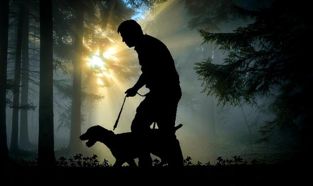 Глюк в Матрице во время прогулки с собакой