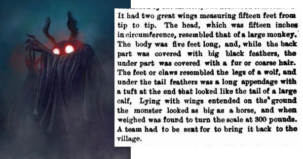 В 1893 году в Канаде убили существо, похожее на Человека-Мотылька