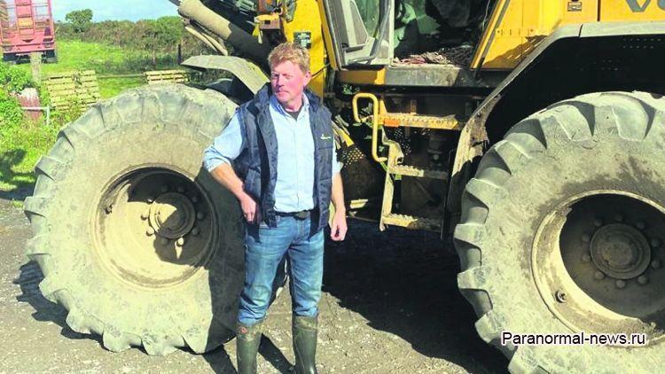 В Ирландии бык случайно опрокинул культовый камень и ферму окутали несчастья
