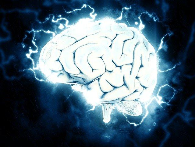10 историй о том, как повреждение мозга наделило людей большим талантом