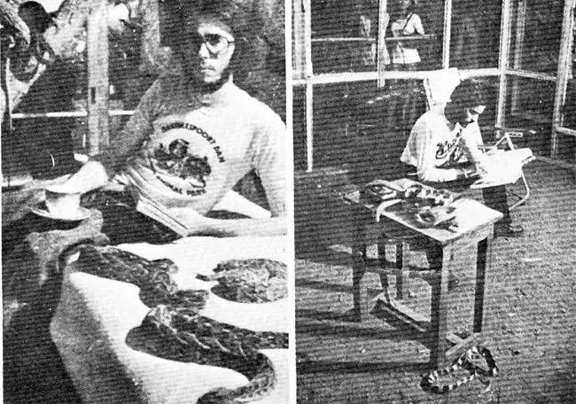 История об индийце, который провел 72 часа в клетке с 72 ядовитыми змеями и его ни разу не укусили