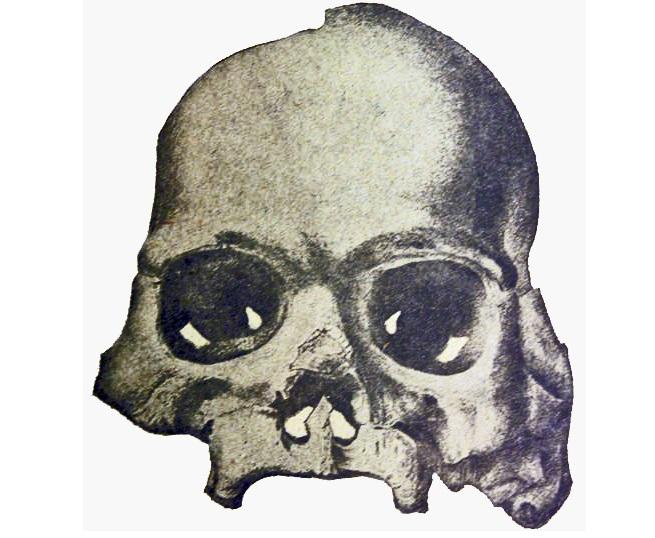 Артефакты, возрастом в десятки миллионов лет, из калифорнийской шахты