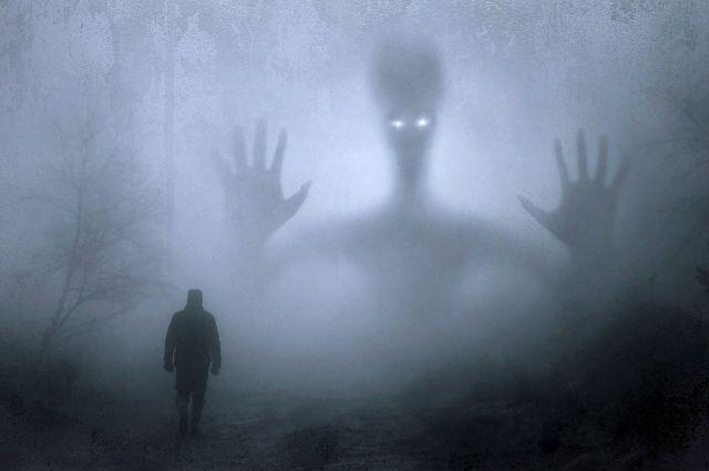 Житель Коннектикута рассказал о встрече в лесу с сине-серым гуманоидом