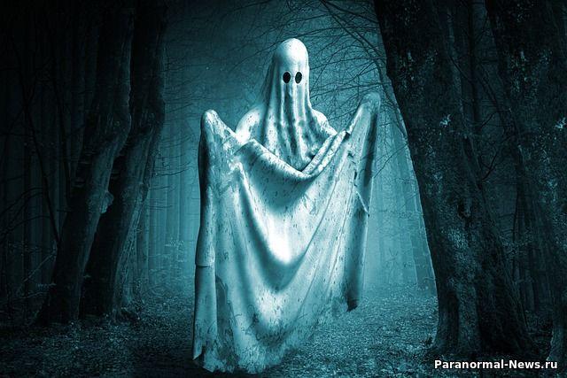 Датчики автомобиля Tesla обнаружили призрак человека на кладбище
