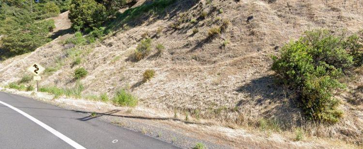 В Калифорнии полицейский увидел возле шоссе тело огромного йети
