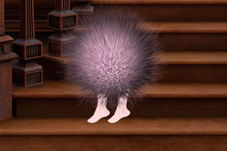 Странные живые меховые шарики на двух ножках в доме