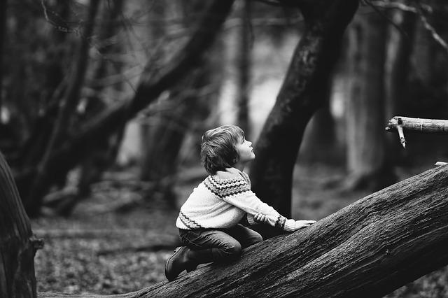 8-летний шведский мальчик гулял у леса и его похитили пришельцы