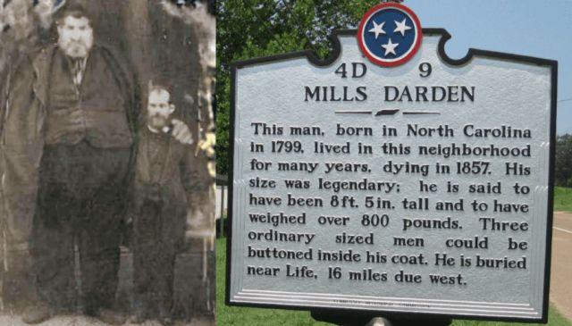 Очень высокий и чрезвычайно толстый - странная история Миллса Дардена