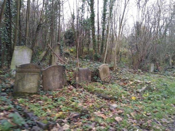Оборотень с кладбища Камберуэлл