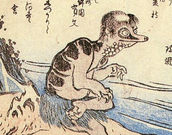 Житель Японии рассказал как увидел легендарного речного монстра Каппу