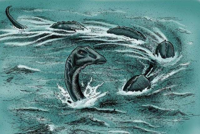 В Канаде увидели и сфотографировали нечто черное и огромное в озере Оканаган, где по легендам живет монстр