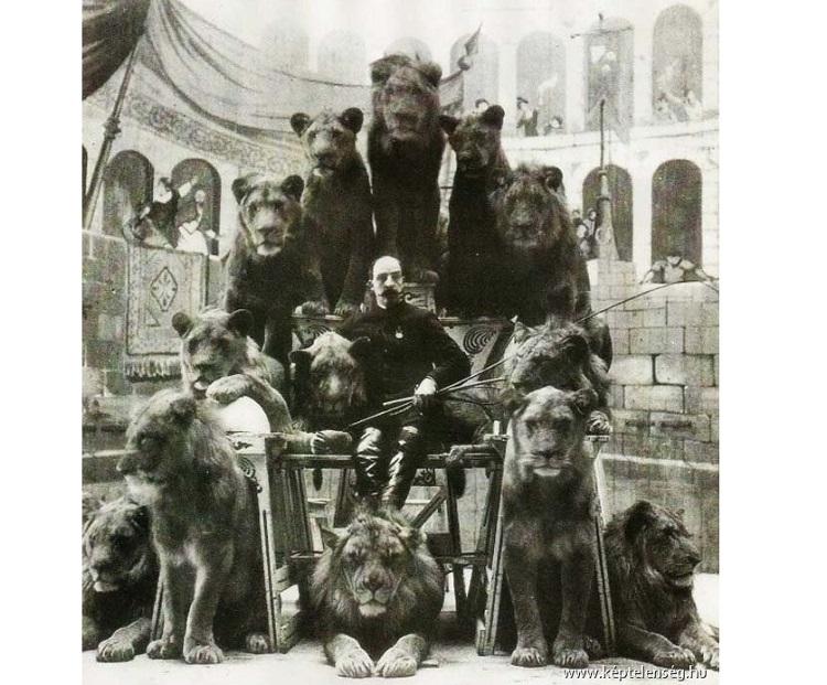 Капитан Джек Бонавита, известный как Заклинатель львов