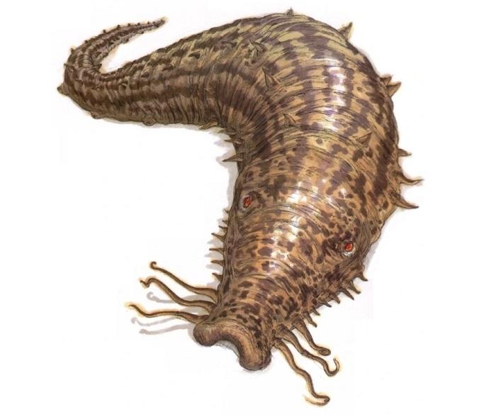 Загадочные криптиды в виде огромных слизней - неизвестные науке животные?