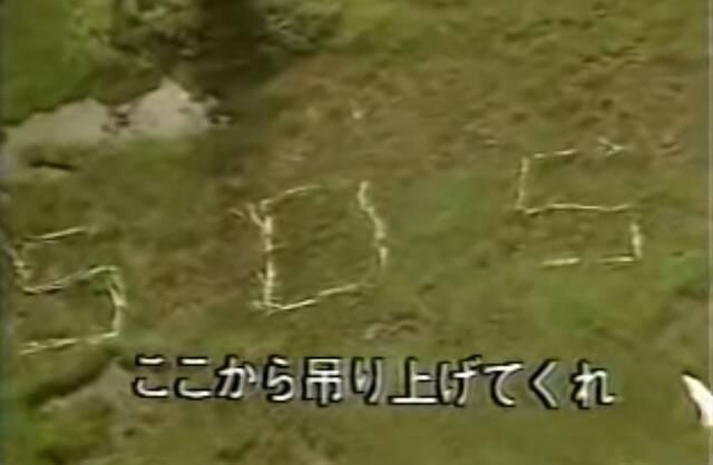 Тайна мертвого туриста в лесу, который с переломанными костями сложил из тяжелых бревен знак SOS
