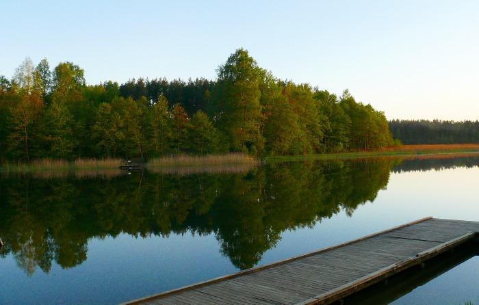 Житель Польши рассказал как дважды встретил инопланетян на озере