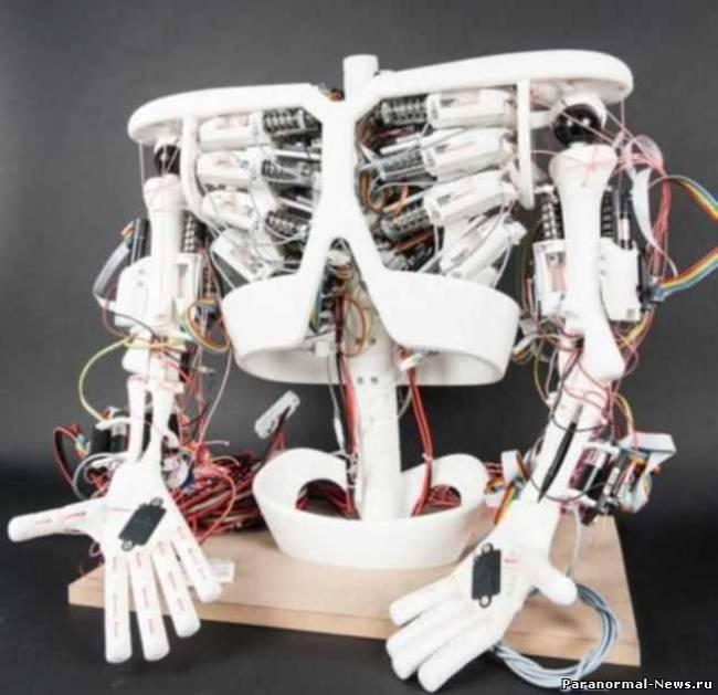 Ученые собираются создать робо-ребенка с искусственными мышцами