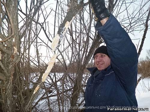 Игорь Бурцев о кемеровском йети (6 фото + видео)