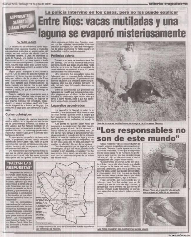 В Аргентине новый странный случай убийства коровы