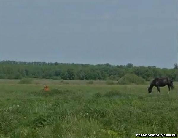 Аномальные природные явления в Туле и Курской области (4 Видео+7 фото)