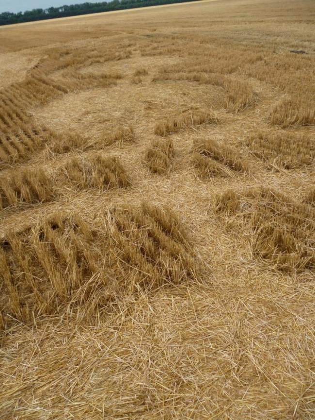 На поле Краснодарского края кто-то оставил красивый узор