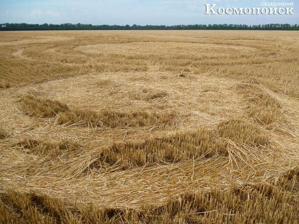 Космопоиск исследовал круги на полях Кубани и Львовской области