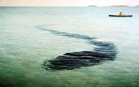 10 самых загадочных фотографий в мире (17 фото)
