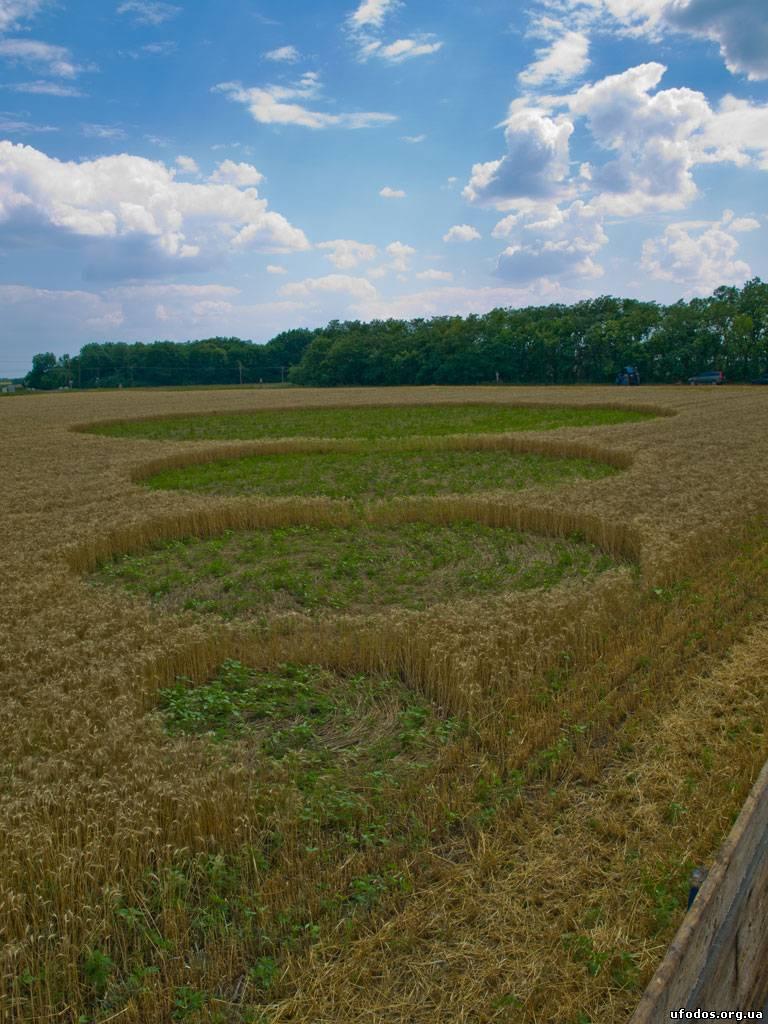Круги на поле возле села Григоровка