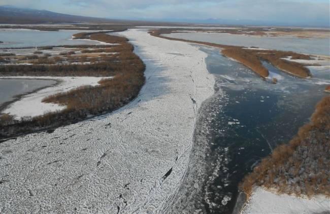 Жертвы камчатской реке