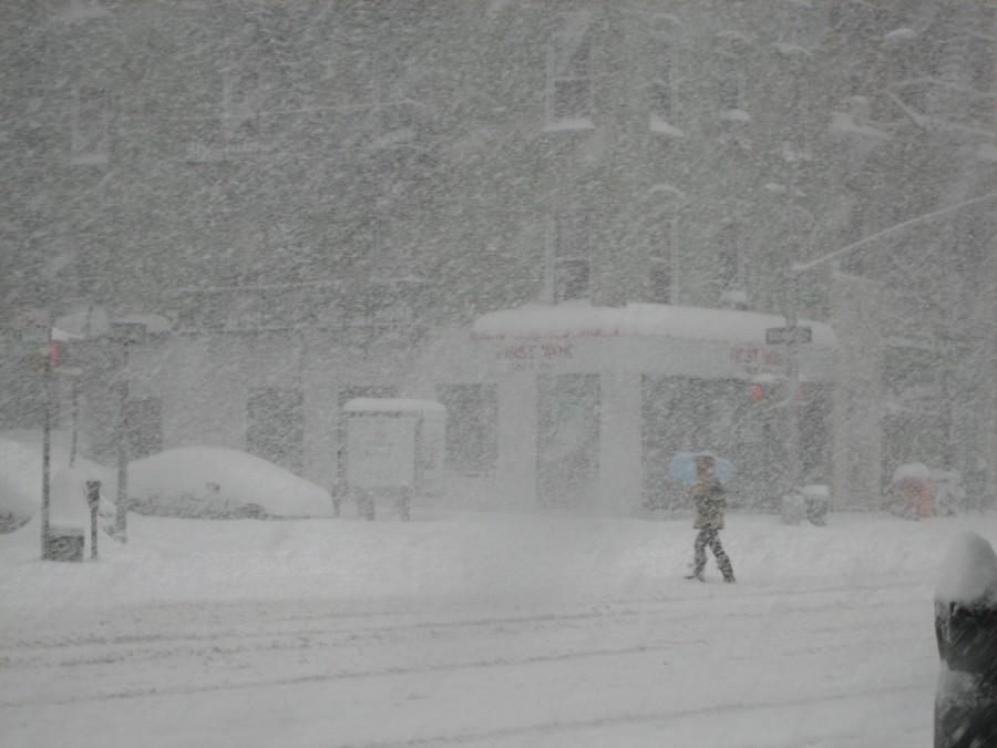 Аномальные холода в США (5 фото + 2 видео)